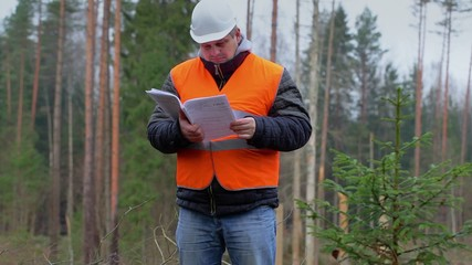 Forest engineer with documents in the forest