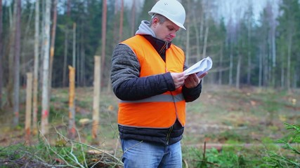 Forest engineer reading documents in the forest