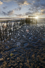 View of an old fisherman palaphitic pier on the Sado marshlands.