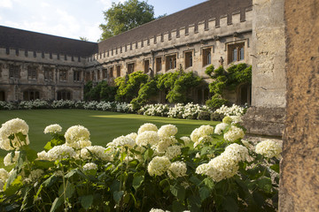 New Building of Oxford Magdalen College,