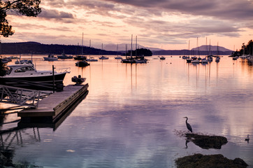 tranquil harbour at sunset, Victoria, BC, Canada
