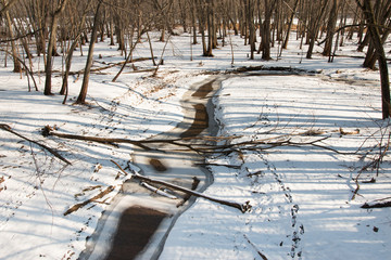 Logs lie athwart a  brook in winter forest