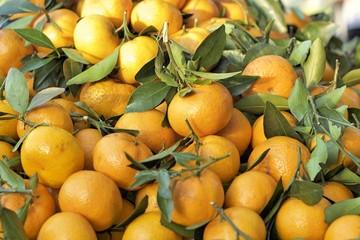 Oranges fruits at the market