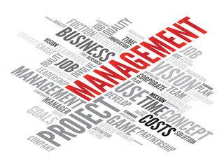 MANAGEMENT business concept in word tag cloud, vector background