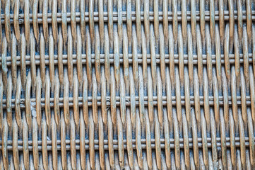 Texture of reed