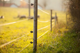 Electric fencing around a pasture with farm animals