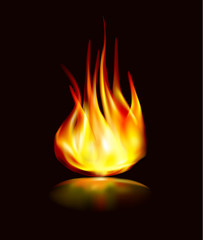 flame icon vector fire with reflection