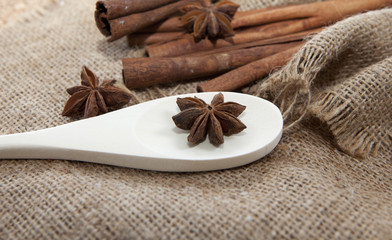 aromates bio anis badiane