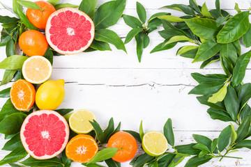 Citrus fruits frame.