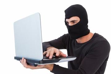 Focused burglar with balaclava holding laptop