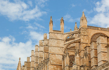 Close up of Palma de Majorca Cathedral