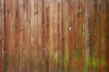 Hintergrund farbenfrohe Bretterwand mit Grünalgen