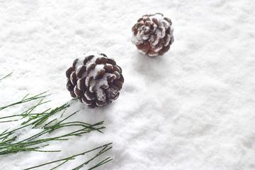 pine cones decoration stain snow background