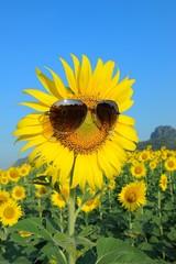 Smiley Sunflower wearing sunglasses