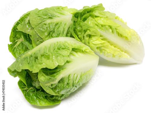 Fotobehang Salade Romana