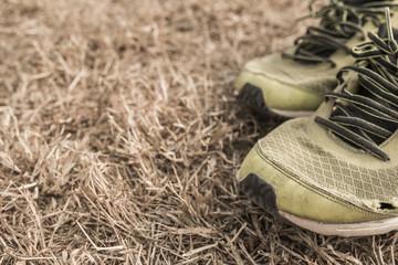 Running shoes on a green grass field