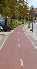 Bike path on the promenade of Palma de Mallorca