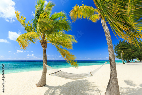 Foto op Plexiglas Caraïben Hammock and palm trees at 7 mile beach, Grand Cayman