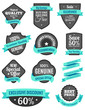 Badges and Ribbons Turquoise Two - 74545436