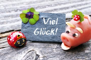 Viel Glück! Tafel mit Glücksklee, Marienkäfer und Glücksschwein