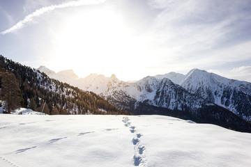 Paesaggio di montagna in inverno con neve