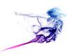 Colorful blue and purple smoke - 74548420