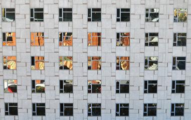 Windows in modern building