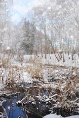 Beautiful winter landscap