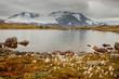 canvas print picture - Hochgebirge in Norwegen