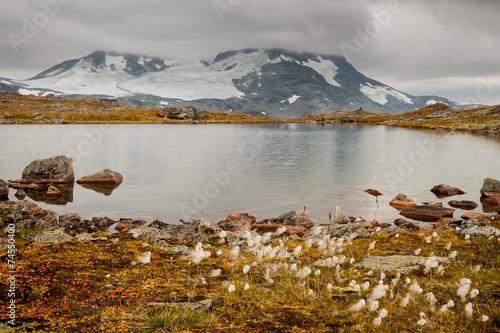canvas print picture Hochgebirge in Norwegen