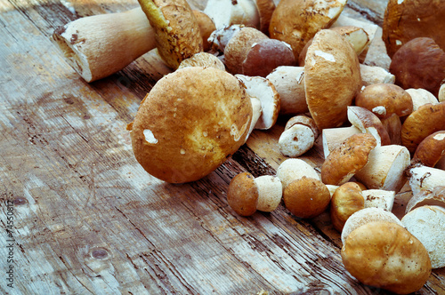 Mushrooms cepes on wooden background - 74550812