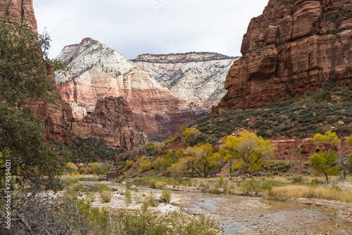 Tuinposter Canyon Autumn in Zion NP