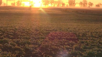 beautiful autumn sunrise sunlight on farm fields and frost