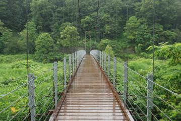 Bridge over Hime river in Hakuba, Nagano prefecture, Japan