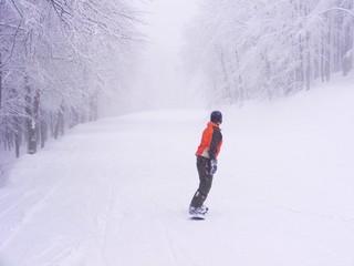 Discesa con lo snowboard