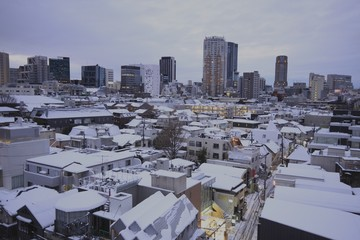 After heavy snow day in Tokyo