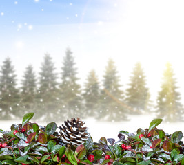 Christmas background with snowy forest