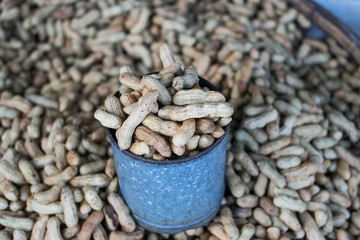 Pile of peanuts in shell background
