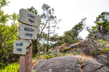 trail signs at East Sooke Regional Park, near Victoria, BC, Cana