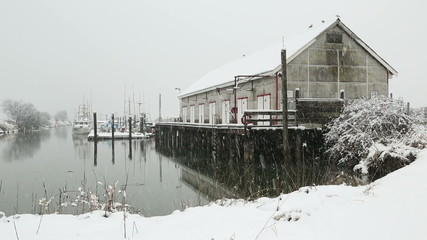 Scotch Pond, Steveston, BC Snow