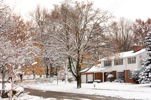 Winter Neighborhood street scene