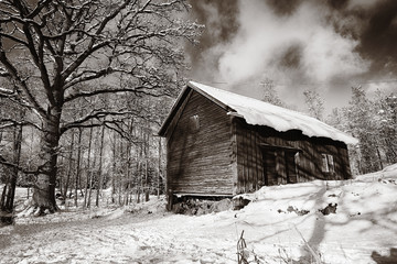 old cottage, barn in a snowy winter landscape