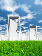 White door in grass with sky background