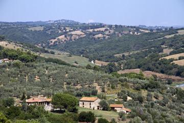 Grossetano, campagna