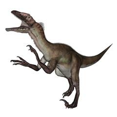 Utahraptor dinosaur roaring - 3D render