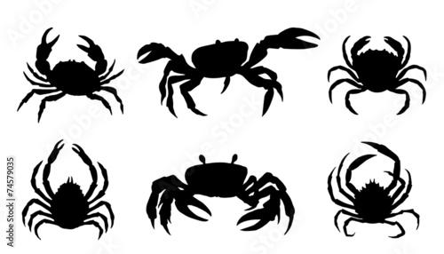 crab silhouettes - 74579035