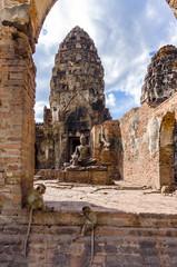 猿寺のサル タイ