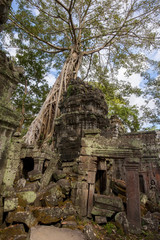 Angkor Ta Prohm in Cambodia