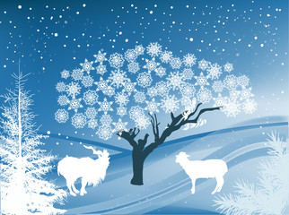 goats in blue and white winter forest