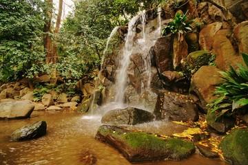 名主の滝公園の男滝